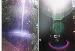 light567.jpg